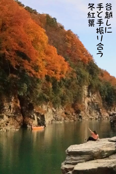谷越しに手と手振り合う冬紅葉